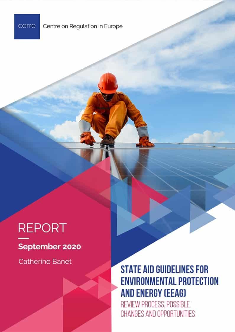 CERRE-State Aid Reform