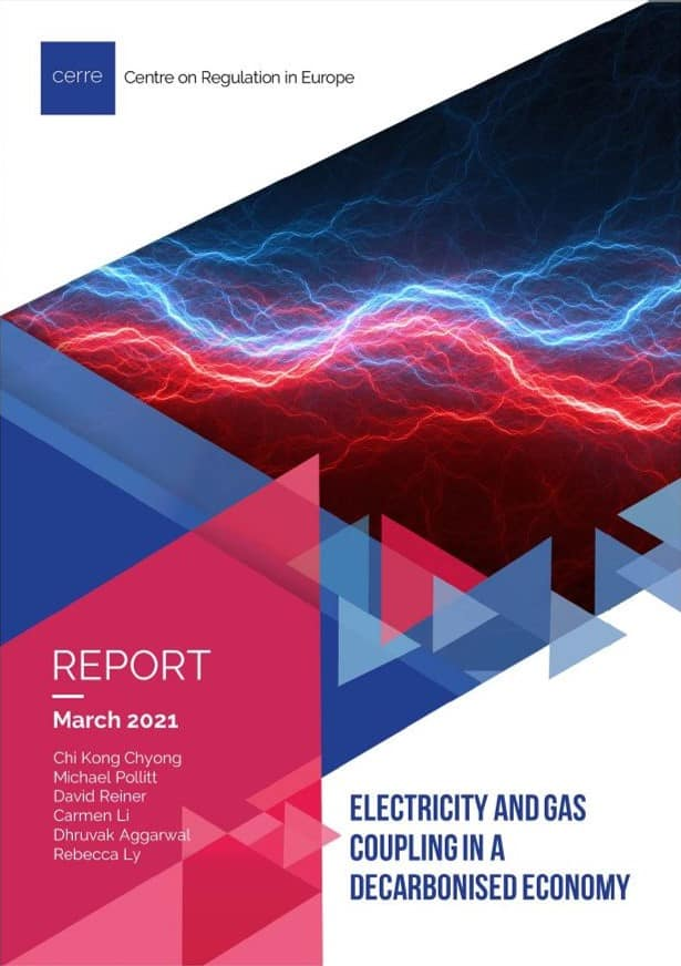 Electricity And Gas Coupling In A Decarbonised Economy