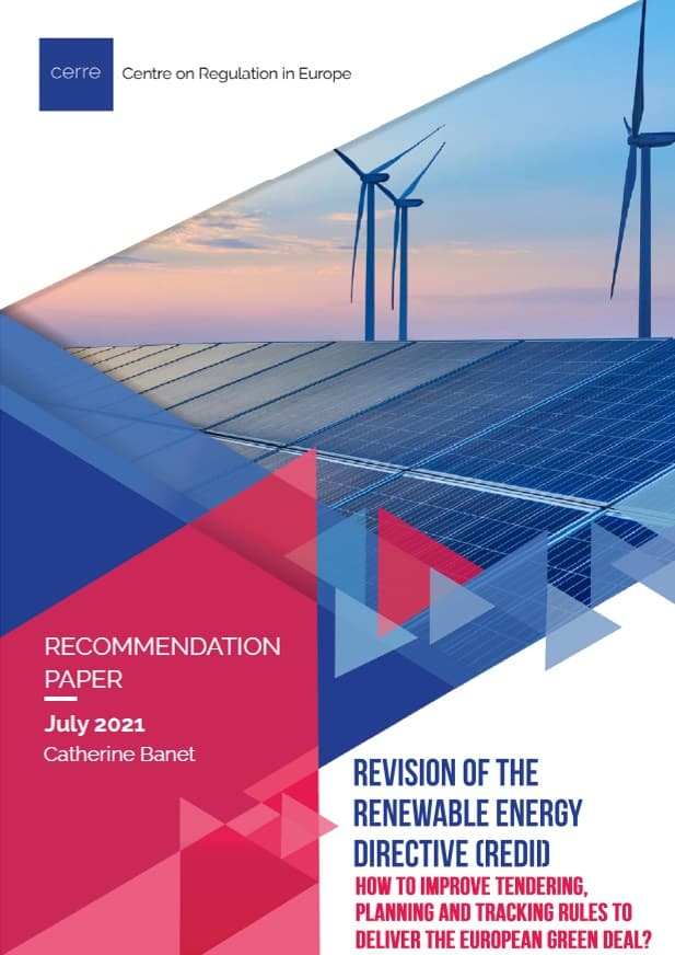 Revision of the Renewable Energy Directive (REDII): How to improve tendering, planning and tracking rules to deliver the European Green Deal